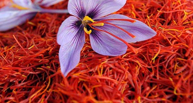 saffron2.jpg