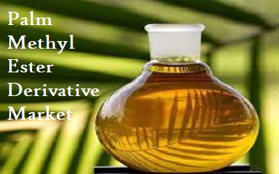 Palm Methyl Ester Derivative Market